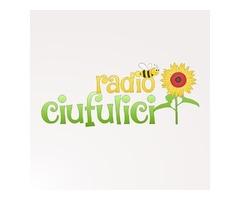 Radio Ciufulici